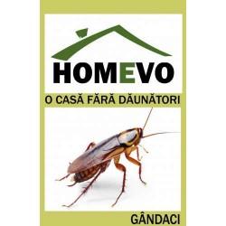 Insecticid Gel pentru Gândaci de bucătărie, Homevo