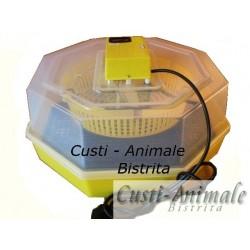 Incubator CLEO 5
