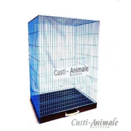 Colivie pasari/50 vopsita (albastru)