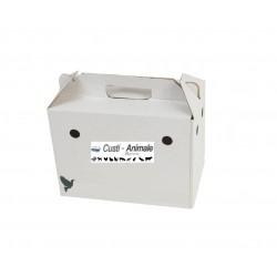 Cutie carton transport porumbei
