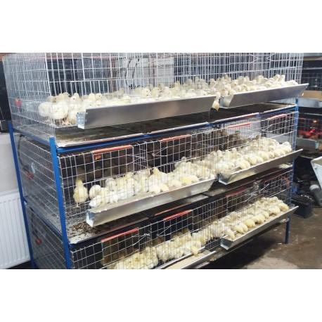 Modul custi crestere pui de o zi cu trei etaje 200 cm