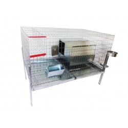 Cusca iepuri reproductie fatare pentru rasa uriasa, 100x60x50 cm