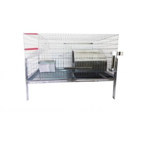 Cusca iepuri reproductie/80 cm